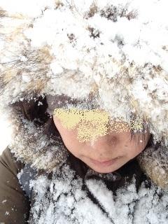 20150120_雪まみれ2.jpg
